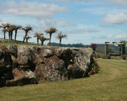 rotorua-landscaping12.jpg