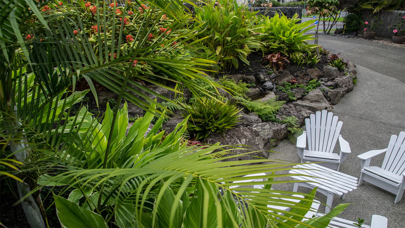 Hawaiian landscape peter fry landscapes for Landscape design hawaii