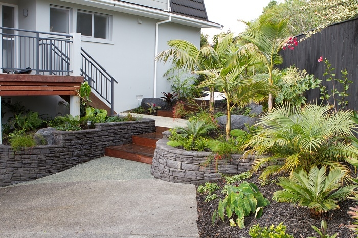 Tropical delight peter fry landscapes for Auckland landscaping services ltd