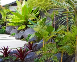 7landscaping-auckland-case-study.jpg